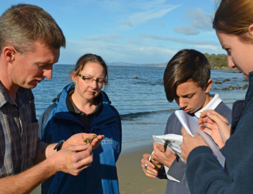 School's in for budding marine scientists